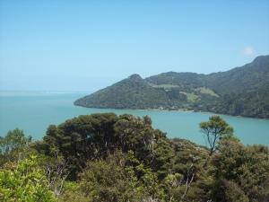 Tweet Twins Jenny Auckland's Hunua & Tasman Sea, New Zealand