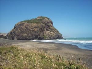 Tweet Twins Whatipu Auckland NZ